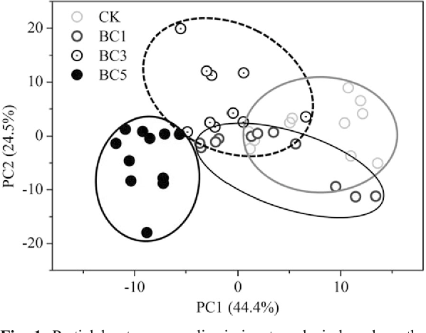 Fig. 1 Partial least squares discriminant analysis based on the metabolite profiles of maize leaves in response to the application of biochar. Treatments in the legend: CK, without biochar application; BC1, BC3 and BC5, biochar application at a dosage of 1%, 3% and 5%, respectively