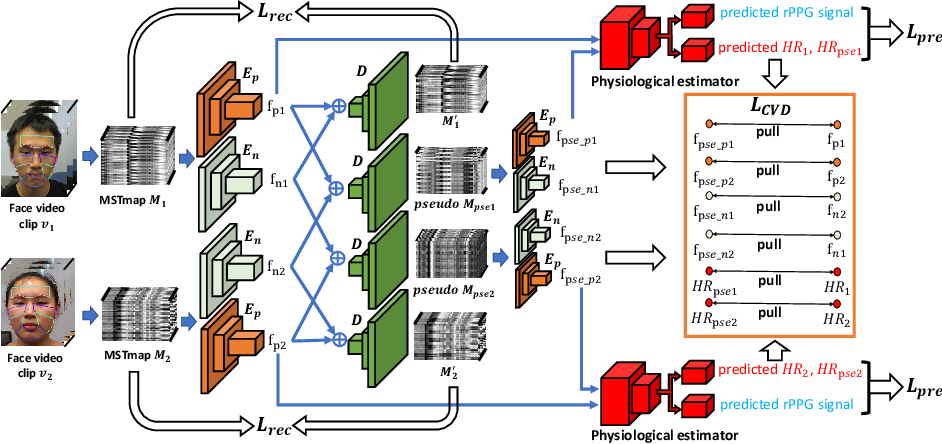 Figure 1 for Video-based Remote Physiological Measurement via Cross-verified Feature Disentangling