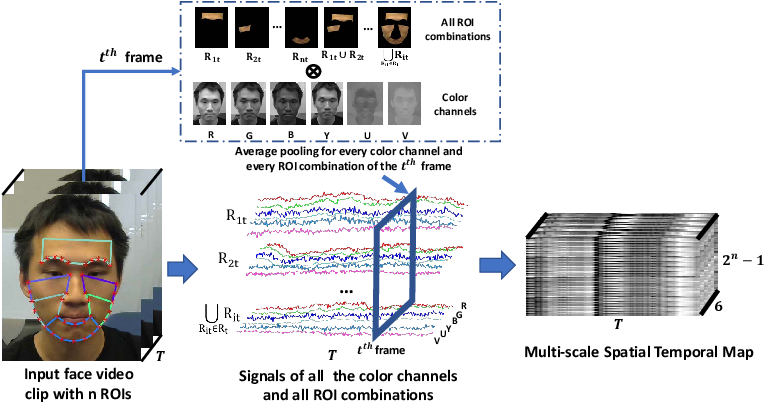 Figure 3 for Video-based Remote Physiological Measurement via Cross-verified Feature Disentangling
