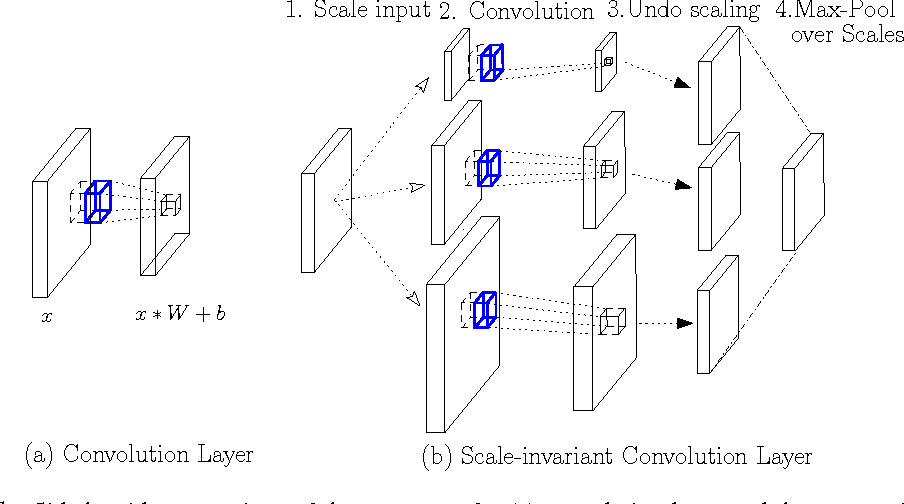 Figure 1 for Locally Scale-Invariant Convolutional Neural Networks