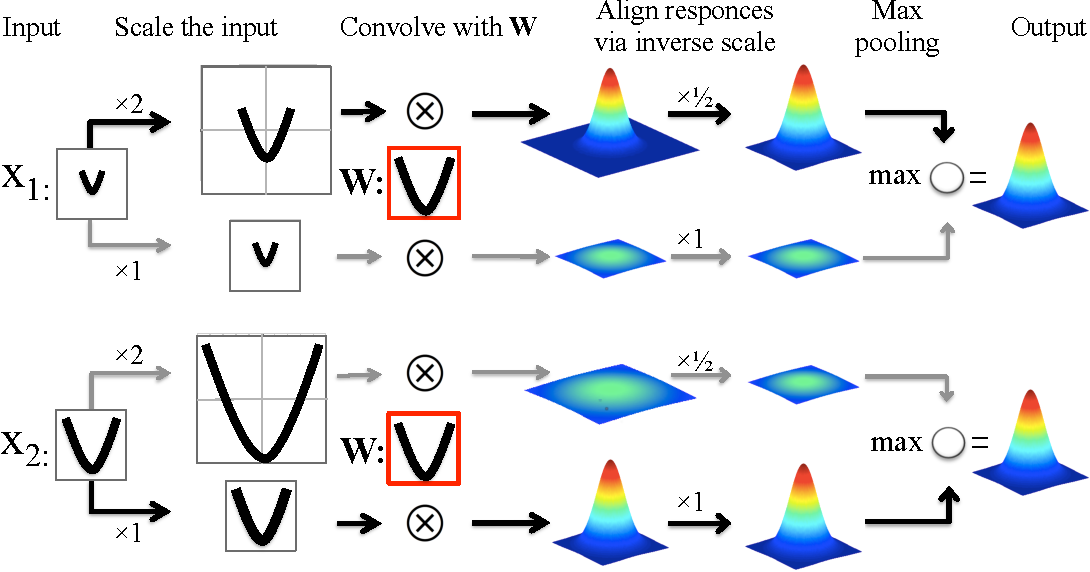 Figure 3 for Locally Scale-Invariant Convolutional Neural Networks