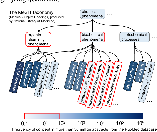 Figure 1 for Enhancing Taxonomy Completion with Concept Generation via Fusing Relational Representations