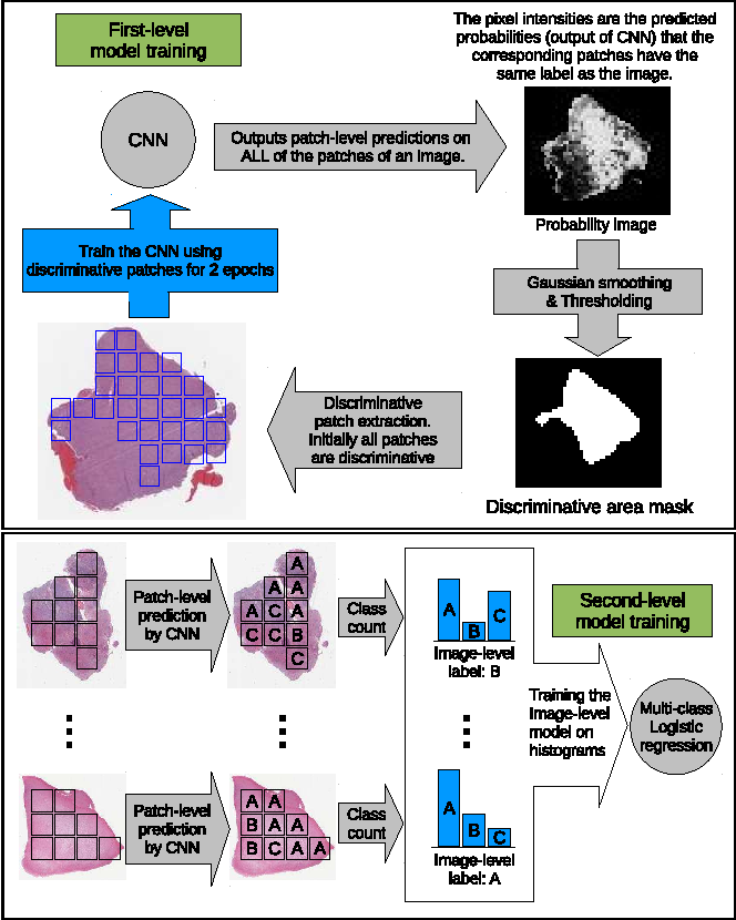 Figure 3 for Patch-based Convolutional Neural Network for Whole Slide Tissue Image Classification