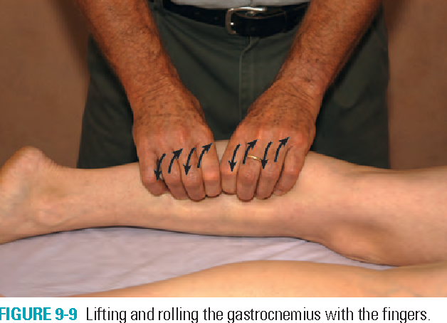 FIGURE 9-9 Lifting and rolling the gastrocnemius with the fingers.