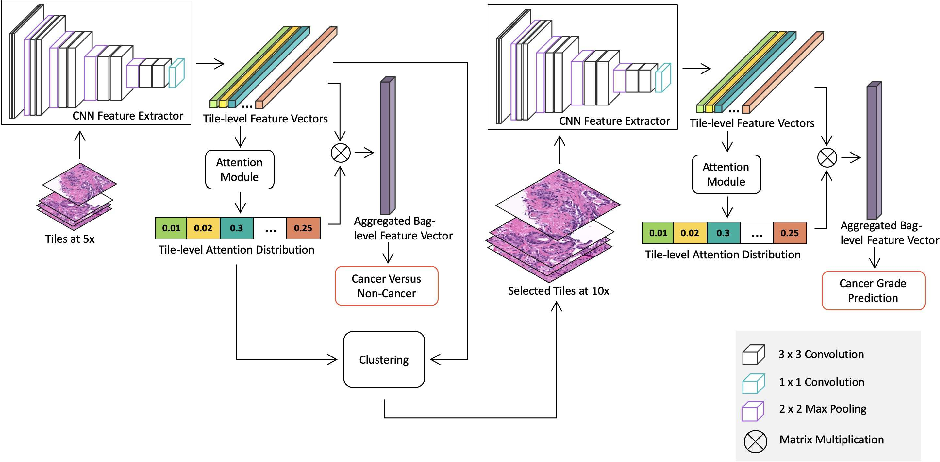 Figure 1 for A Multi-resolution Model for Histopathology Image Classification and Localization with Multiple Instance Learning