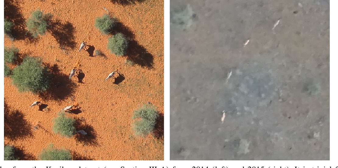 Figure 1 for Half a Percent of Labels is Enough: Efficient Animal Detection in UAV Imagery using Deep CNNs and Active Learning