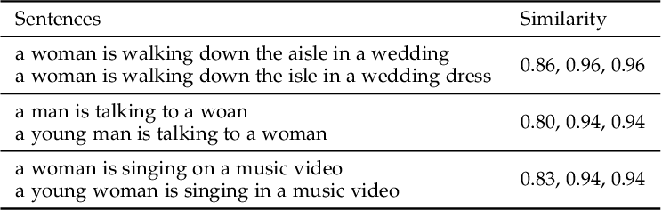 Figure 4 for Annotation Cleaning for the MSR-Video to Text Dataset