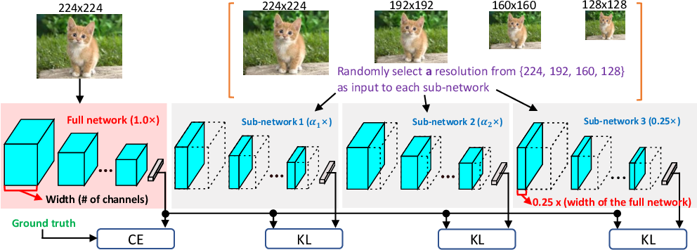 Figure 3 for A closer look at network resolution for efficient network design