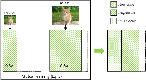 Figure 4 for A closer look at network resolution for efficient network design