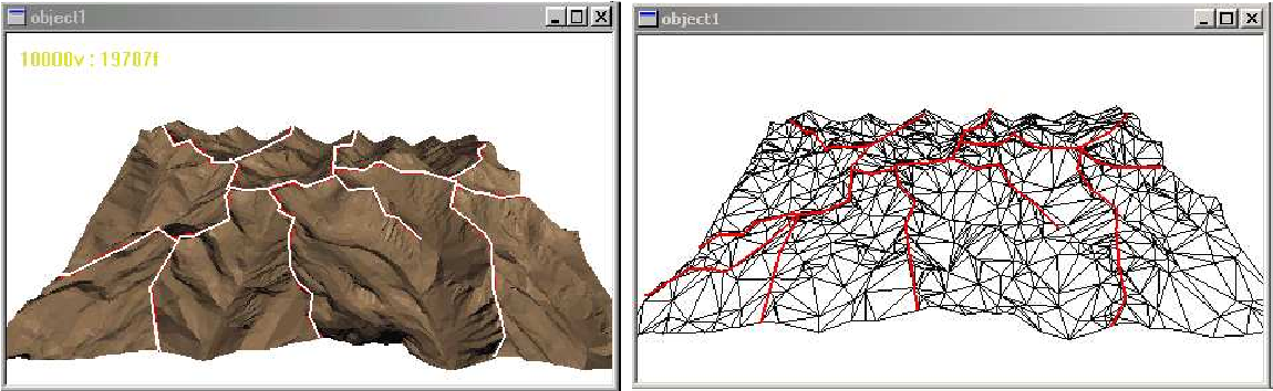 Figure 7: The ridge network (partially) marked on a terrain dataset (left) and on a simplification of it obtained by VPTS (right).