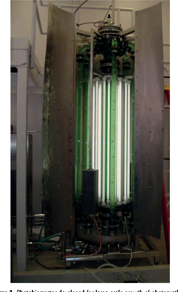 Figure 1. Photobioreactor developed for large-scale growth of photosynthetic algae and cyanobacteria. The reactor has a capacity of 122 l. It can be sterilized in situ and allows for control of light intensity, cell density, temperature, pH and gas flow.