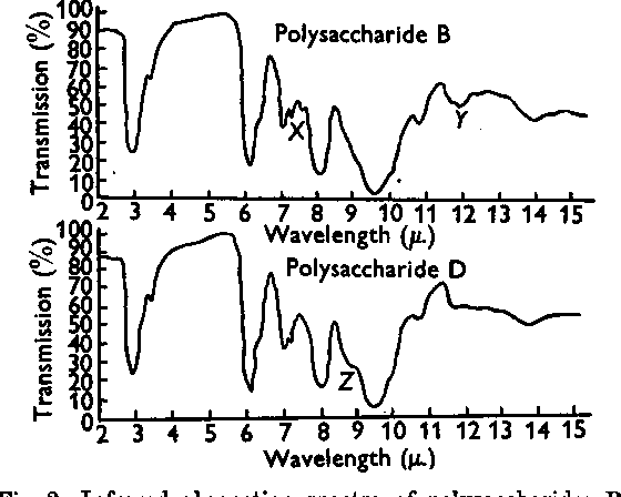 2 Infrared Absorption Spectra Of Polysaccharides B And D Points At Which