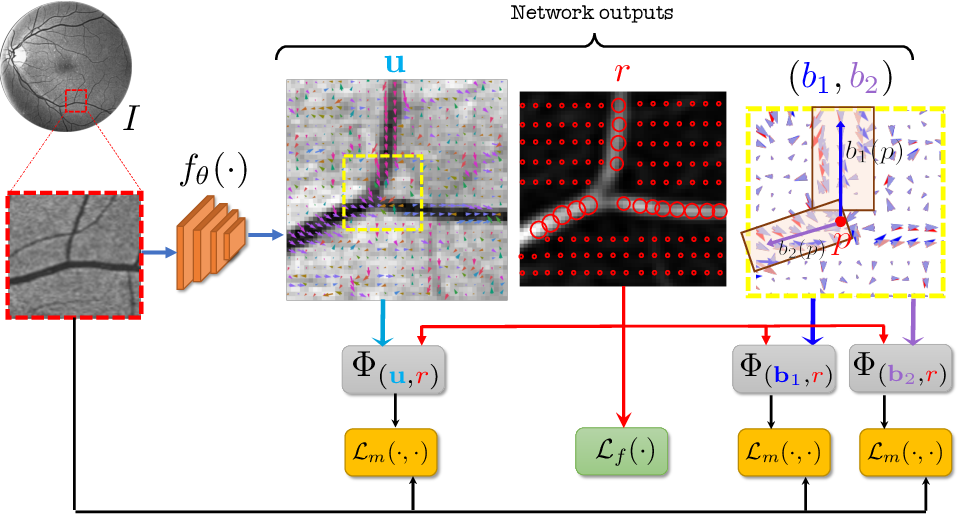 Figure 1 for Self-Supervised Vessel Enhancement Using Flow-Based Consistencies