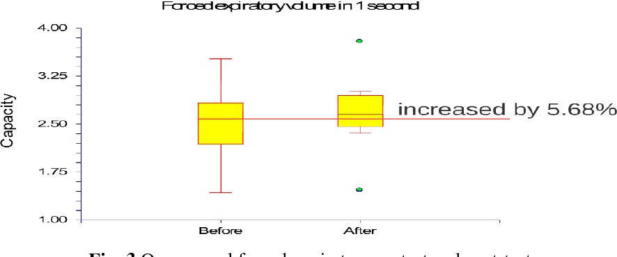 Fig. 3 One-second forced expiratory pretest and post-test