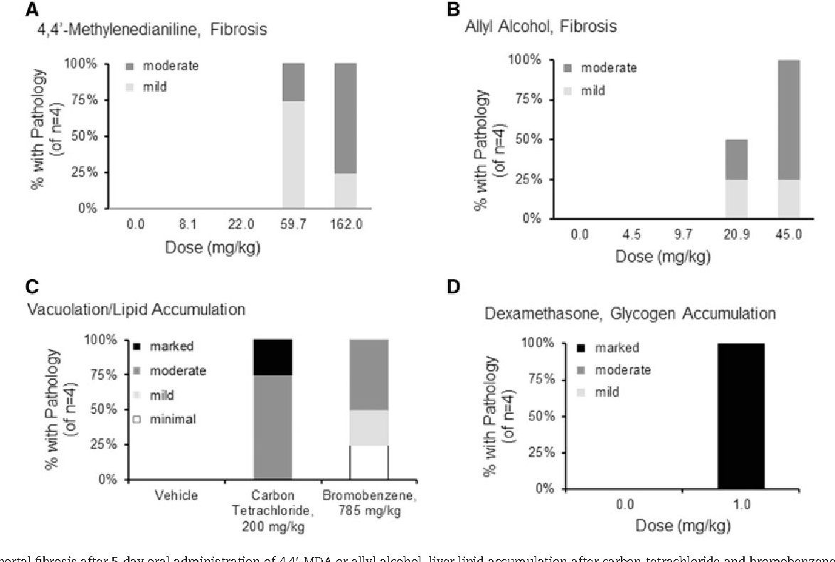 """FIG. 6. Periportal fibrosis after 5-day oral administration of 4,40-MDA or allyl alcohol, liver lipid accumulation after carbon tetrachloride and bromobenzene, and liver glycogen accumulation after dexamethasone in second """"test"""" set of animals (group 2 experimental animals). A, Dose-dependent increase in fibrosis phenotype after 5- days oral administration of 4,40-MDA and (B) allyl alcohol. C, Elevation of vacuolation indicative of lipid accumulation after 200 mg/kg carbon tetrachloride and 785 mg/ kg bromobenzene treatment. D, Increased cytoplasmic alteration indicative of glycogen accumulation after 1 mg/kg dexamethasone administration."""