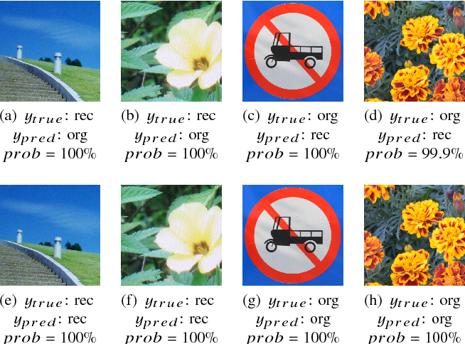 Figure 3 for Security Consideration For Deep Learning-Based Image Forensics