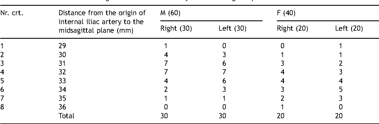 Morphometry Of The Internal Iliac Artery In Different Ethnic Groups