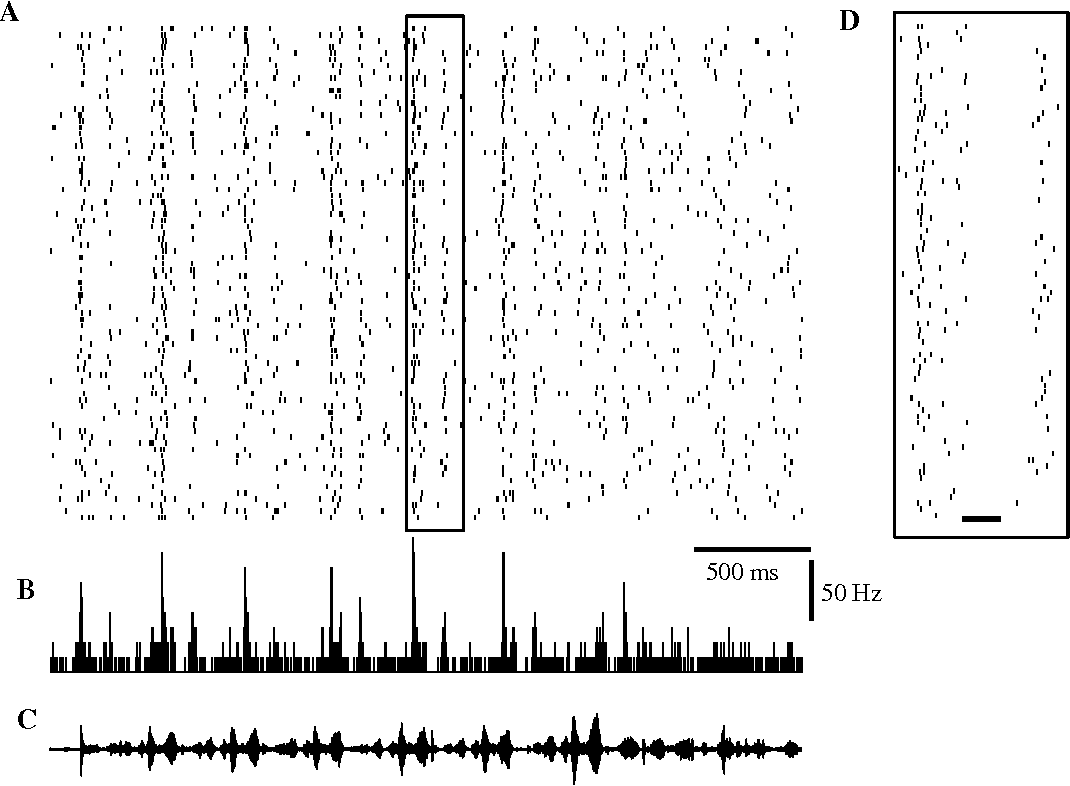 Figure 1 from Spike timing and the coding of naturalistic