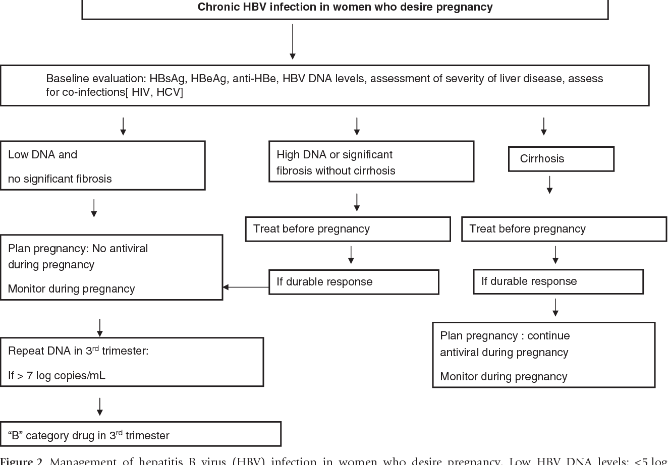 Is pregnancy possible with HBV