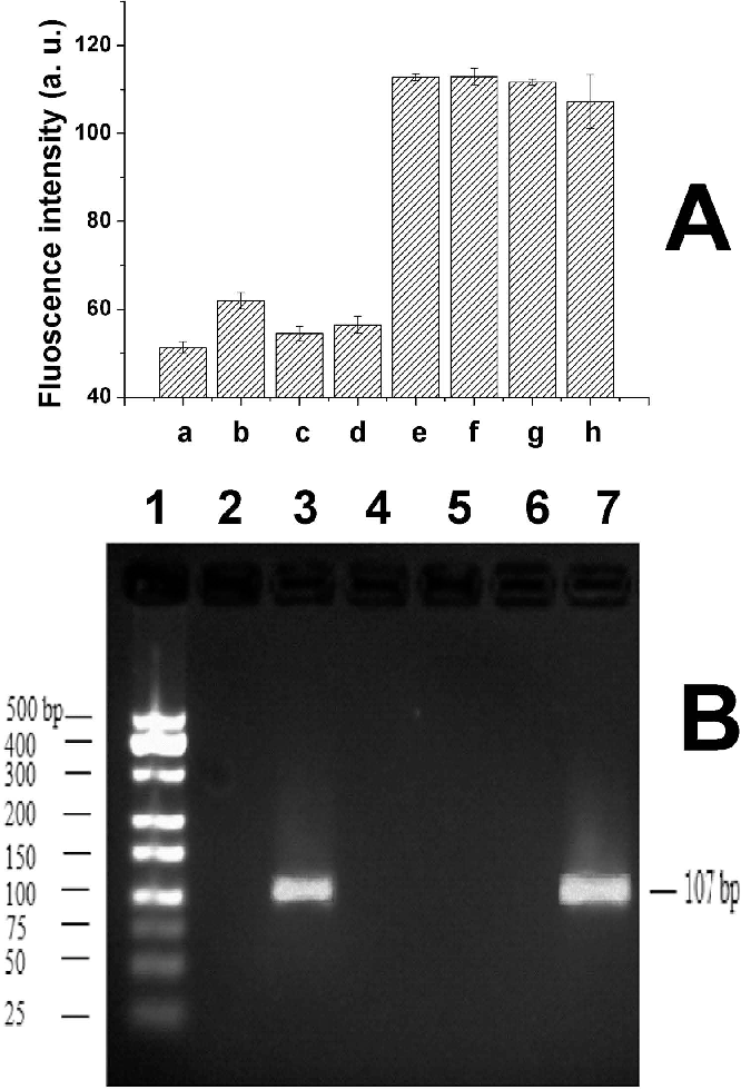 Figure 5. Selectivity of the sensor and effect of interference molecules. (A) a: blank; b: 1.0 × 10−7 M of lysozyme; c: 1.0 × 10−7 M of hemoglobin; d: 1.0 × 10−7 M of apo-transferrin human; e: 1.0 × 10−8 M of thrombin; f: mixture of 1.0 × 10−8 M of thrombin and 1.0 × 10−7 M of lysozyme; g: mixture of 1.0 × 10−8 M of thrombin and 1.0 × 10−7 M of hemoglobin; h: mixture of 1.0 × 10−8 M of thrombin and 1.0 × 10−7 M