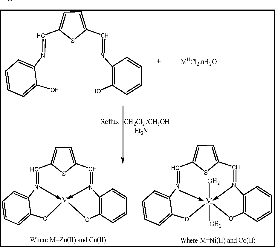 Figure 3 From Synthesis Characterization Antimicrobial And