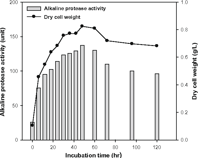 3 Figure1 1 figure 1 from effect of alkaline protease producing exiguobacterium