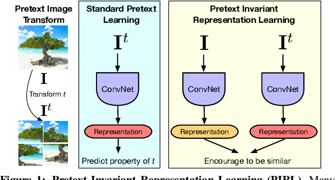 Figure 1 for Self-Supervised Learning of Pretext-Invariant Representations