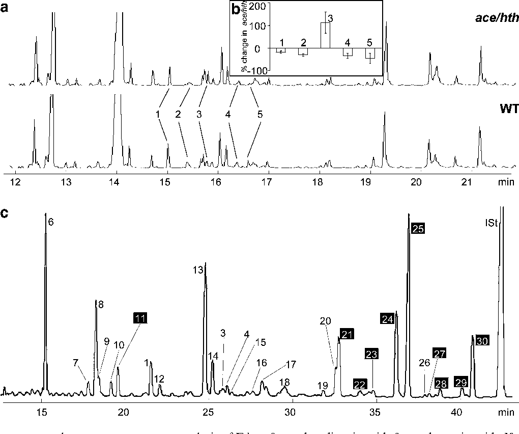 Fig. 3 a–c Gas chromatography–mass spectrometry analysis of FA metabolites. a Comparative metabolic profiling of total lipids extracted from hth-12 and wild-type (WT) inflorescences. b Five metabolites (peaks 1–5), the accumulation of which is affected in hth-12, are shown as mean (±SE) percentage changes (n=3). c Metabolic profiling of residual-bound lipids extracted from WT mature leaves. The white numbers on black background indicate the peaks corresponding to 2-hydroxy FAs. Peak identities in (a–c): 1 hexadecane-1,16-dioic acid; 2 16-oxo hexadecanoic acid; 318- hydroxy octadecadienoic acid; 4 octadecane-1,18-dioic acid; 5 18- oxo hexadecanoic acid; 6 hexadecanoic acid; 7 heptadecanoic acid;
