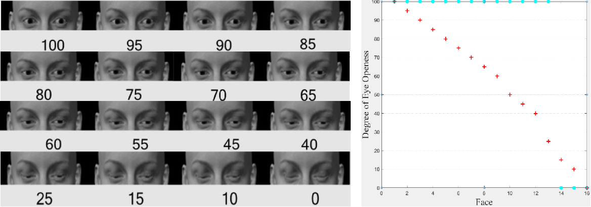 Figure 1 for Weakly-Supervised Degree of Eye-Closeness Estimation