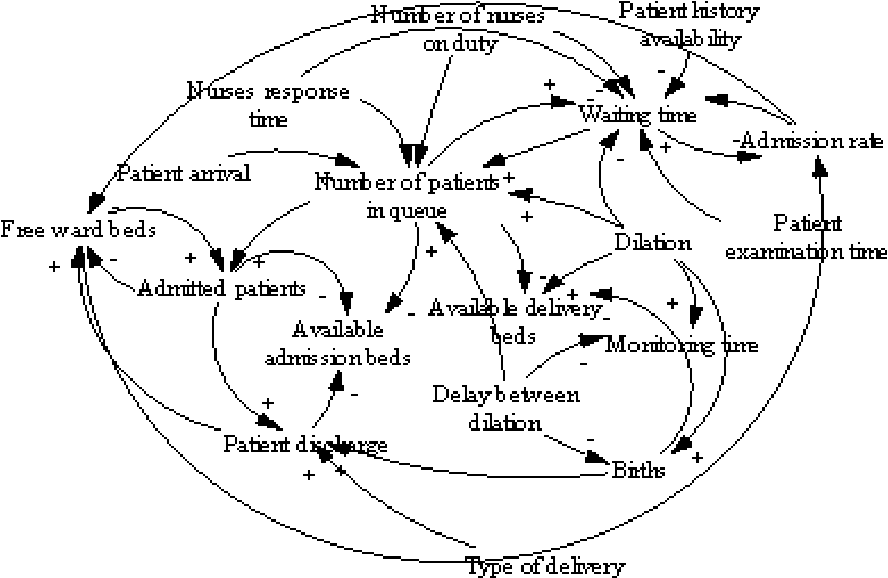 From A System Dynamics Causal Loop Diagram To An Object Role Model