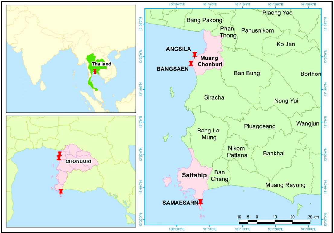 Coastal debris analysis in beaches of Chonburi Province eastern of