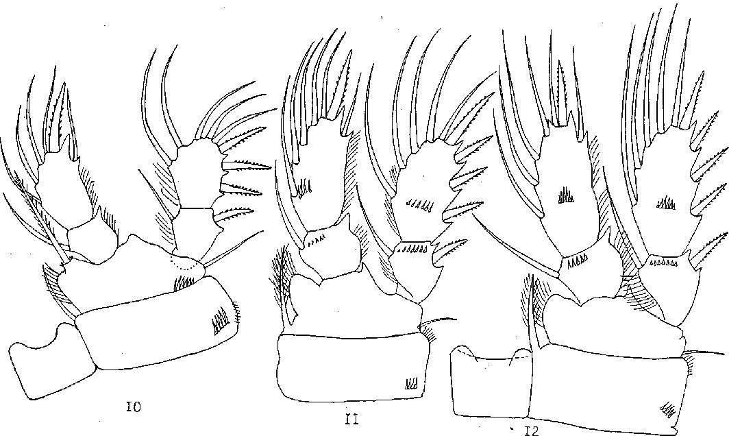 figure 10–12