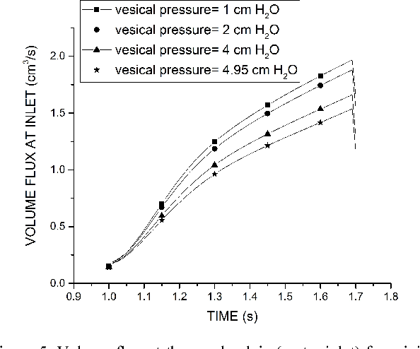 The effect of the ureterovesical junction on urinary peristaltic ...
