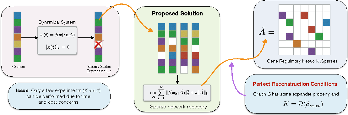Figure 1 for RIDS: Robust Identification of Sparse Gene Regulatory Networks from Perturbation Experiments