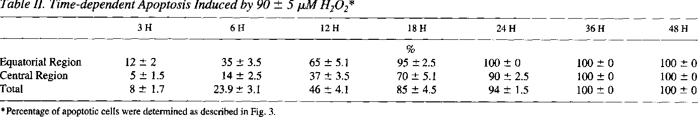 Table II. Time-dependent Apoptosis Induced by 90 +- 5 tzM H202*