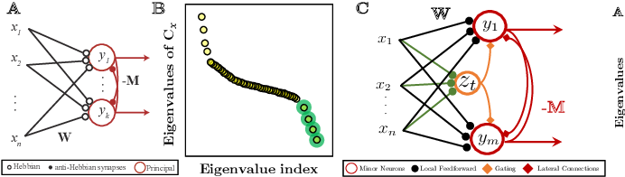 Figure 1 for A Neural Network with Local Learning Rules for Minor Subspace Analysis