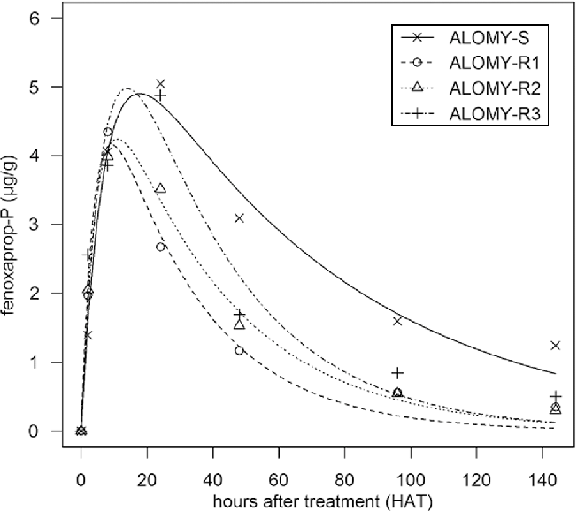 Fig. 4 Dynamics of fenoxaprop-P in the populations ALOMY-S, ALOMY-R1, ALOMY-R2 and ALOMY-R3 between 2 and 144 h after treatment. Each point represents the mean value of three replicates