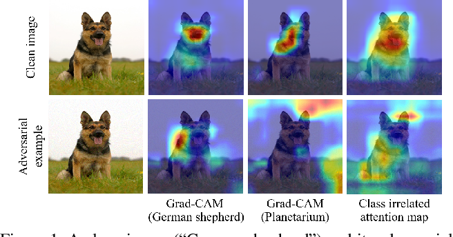 Figure 1 for AGKD-BML: Defense Against Adversarial Attack by Attention Guided Knowledge Distillation and Bi-directional Metric Learning