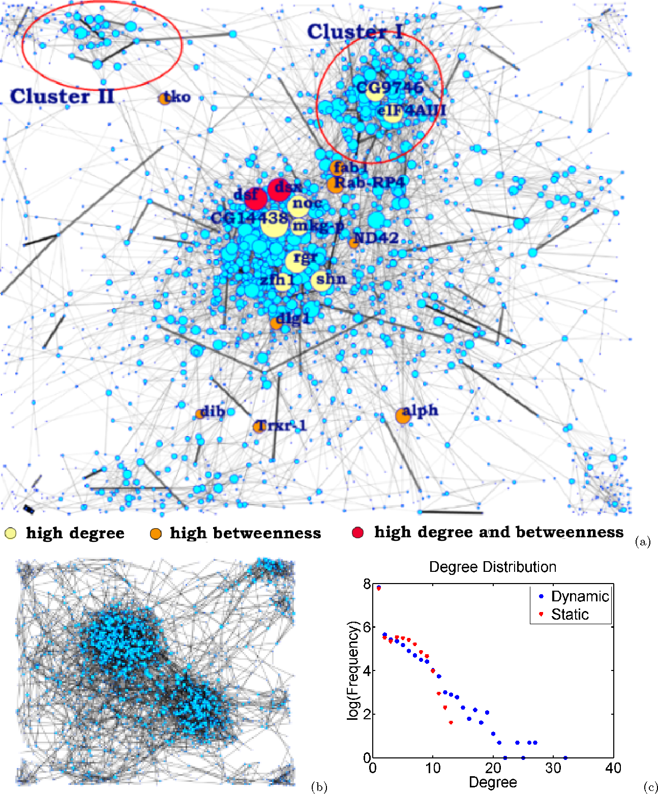 Figure 4 for Time-Varying Networks: Recovering Temporally Rewiring Genetic Networks During the Life Cycle of Drosophila melanogaster