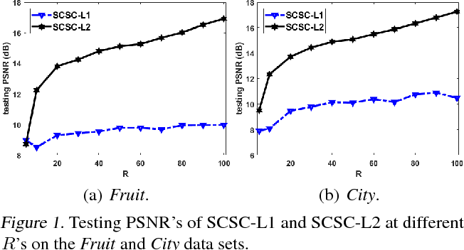 Figure 1 for Online Convolutional Sparse Coding with Sample-Dependent Dictionary