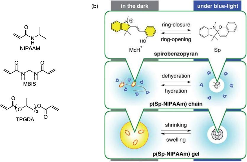 Figure 13 From Responsive Polymer Photonics Semantic Scholar