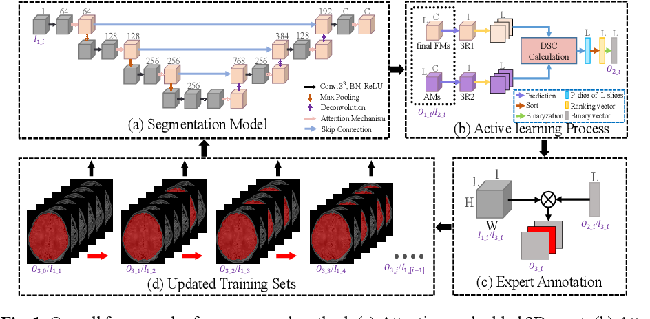 Figure 1 for A sparse annotation strategy based on attention-guided active learning for 3D medical image segmentation