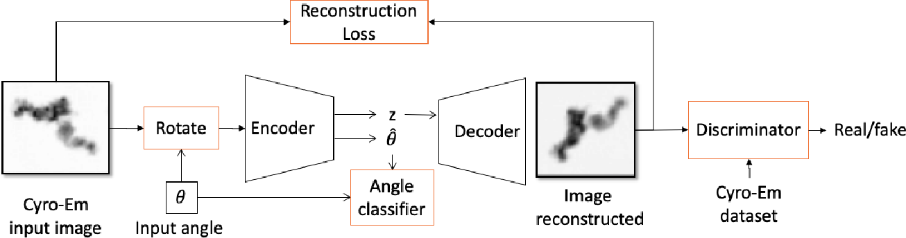 Figure 1 for Learning Rotation Invariant Features for Cryogenic Electron Microscopy Image Reconstruction