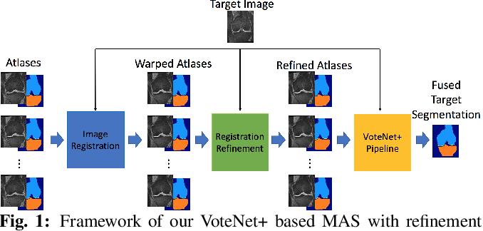 Figure 1 for VoteNet++: Registration Refinement for Multi-Atlas Segmentation