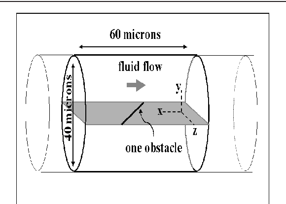 Figure 1 from Nanorobot architecture for medical target