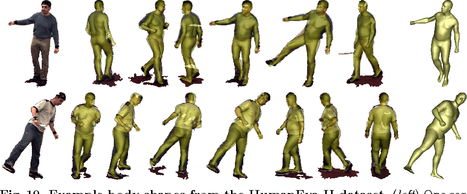 Figure 10 from The Naked Truth: Estimating Body Shape Under Clothing ...