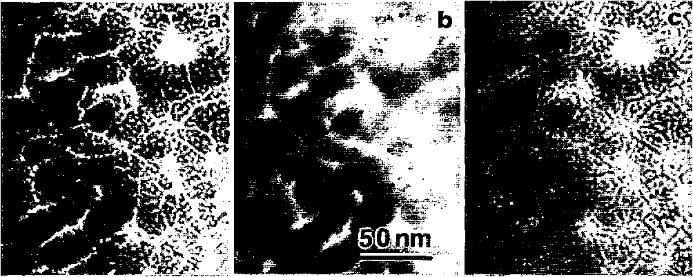 FIG. 5. Bright field TEM images of a Sm-Co film as a function of defocus. The argon pressure for deposition is 30 mTorr. (a) -2600, (b) 0, and k) +2600 nm.