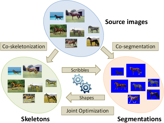 Figure 1 for Image Co-skeletonization via Co-segmentation