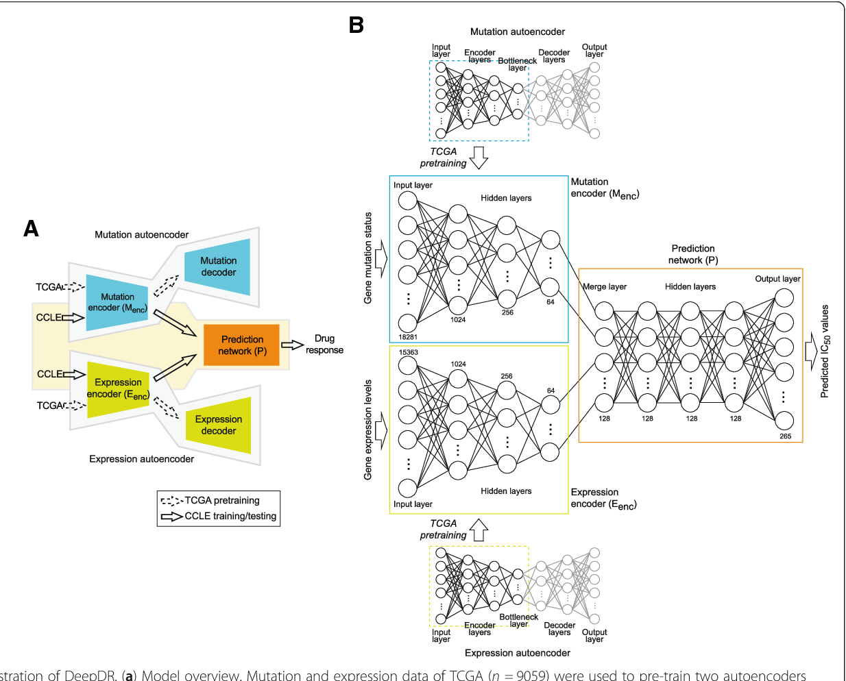 Figure 1 for Predicting drug response of tumors from integrated genomic profiles by deep neural networks