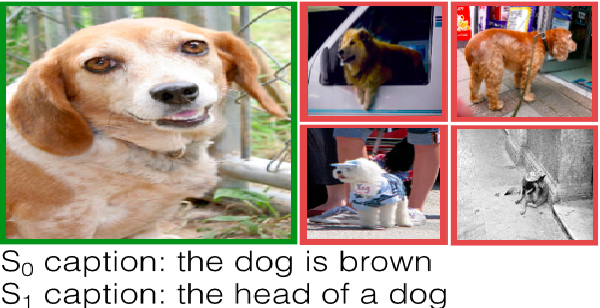 Figure 1 for Pragmatically Informative Image Captioning with Character-Level Inference